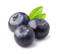 Ripe blueberry with leaves Royalty Free Stock Photo