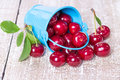 Ripe cherries in a bucket on wooden board Royalty Free Stock Photography