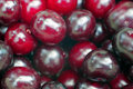 Ripe cherry closeup as background Royalty Free Stock Images
