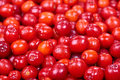 Ripe cornelian cherry Royalty Free Stock Photo