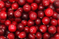 Ripe cranberry natural background made from berries Stock Image