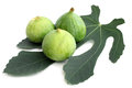 Ripe figs with green leaf on a white background Stock Photography