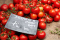 Ripe french tomatoes Royalty Free Stock Image