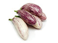 Ripe fresh eggplant isolated white background Royalty Free Stock Image