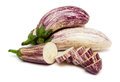 Ripe fresh eggplant isolated white background Stock Photography