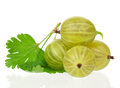Ripe gooseberries Royalty Free Stock Images