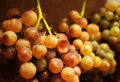 Ripe grapes closeup three bunches of in basket Stock Image