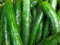 Ripe green cucumbers Royalty Free Stock Photo