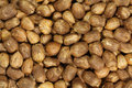 Ripe hazelnut kernels abstract background Royalty Free Stock Images