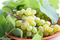 Ripe juicy grapes on the plate Stock Photo