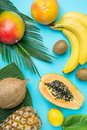 Ripe Juicy Mango Halved Papaya Coconut Kiwi Bananas on Large Palm Leaf on Blue Background. Summer Vacation Relaxation Royalty Free Stock Photo