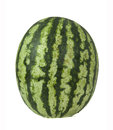 Ripe and juicy water melon Stock Photos