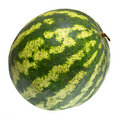 Ripe and juicy water melon isolated Stock Photo
