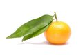 Ripe mandarin with leaves Royalty Free Stock Photo