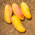Ripe mango in the basket Royalty Free Stock Images