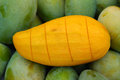 Ripe mango fruit Stock Images