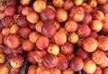 Ripe nectarines Royalty Free Stock Image