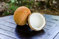 Ripe and open coconuts Royalty Free Stock Photo