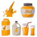 Ripe orange products fruits citrus slices sweet food realistic organic vector illustration.