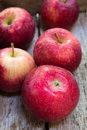 Ripe paula red apples apple fruit in an wooden box Royalty Free Stock Image