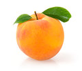 Ripe peach single with leaf isolated on white background Royalty Free Stock Photo