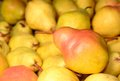Ripe pears in market Royalty Free Stock Photo
