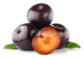 Ripe plum with green leaves Royalty Free Stock Photo