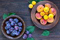 Ripe plums and apricots in ceramic bowls on a dark wooden background. Royalty Free Stock Photo