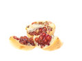 Ripe pomegranate piece isolated on white background Stock Images