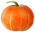 Ripe Pumpkin Isolated