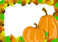 Ripe pumpkins and autumn leaves two on a white background halloween frame Stock Photography