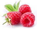 Ripe raspberries white background Stock Images