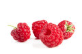 Ripe raspberries on white background. Red juicy berries closeup. Royalty Free Stock Photo