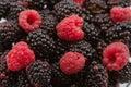 Ripe raspberry and blackberry Stock Photography
