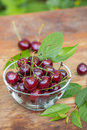 Ripe red cherries with green leaves in a bowl on wooden table Royalty Free Stock Photo