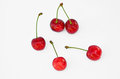 Ripe red cherries with stalks fresh sweet cherry berry fruit Royalty Free Stock Images