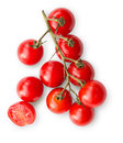 Ripe red cherry tomatoes branch isolated on white background Royalty Free Stock Photo