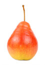 Ripe red pear isolated on white background a with stalk a vertical orientation Stock Photo