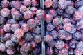 Ripe Red Plums Royalty Free Stock Photo