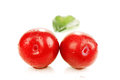 Ripe red plums two in a spray of water photo on the white background Royalty Free Stock Photos