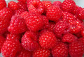 Ripe red raspberries Royalty Free Stock Photo