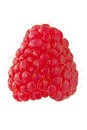 Ripe red raspberry Stock Images