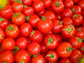 Ripe red tomatoes Stock Image