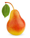 Ripe red-yellow pear fruit with leaf Royalty Free Stock Photo