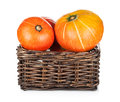 Ripe small pumpkins in basket isolated on white background Stock Image