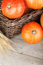 Ripe small pumpkins in basket on wooden table background Royalty Free Stock Images