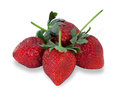 Ripe strawberries with leaves isolated Royalty Free Stock Photo