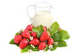 Ripe strawberries and milk glass jug full of with green leaves flowers on white background Royalty Free Stock Images