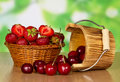 Ripe strawberries and sweet cherries Royalty Free Stock Photo
