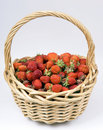 Ripe strawberry in a basket Stock Photos